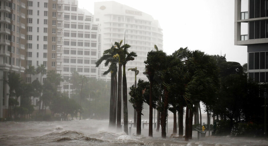 Lige nu raser orkanen Irma i delstaten Florida. Der forventes oversvømmelser på mellem 3 og 5 meter. Downtown Miami, Florida, U.S., September 10, 2017. REUTERS/Carlos Barria