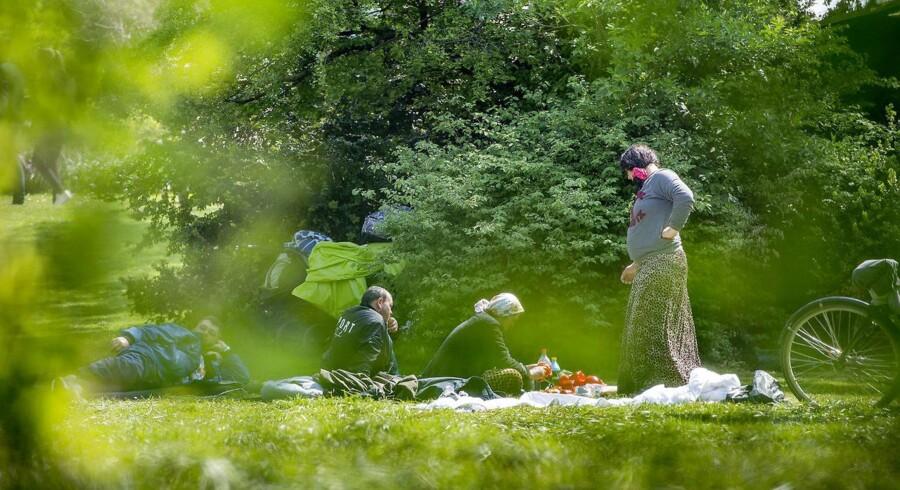 Søndag d. 14. maj 2017 har en større gruppe romaer har lavet en lejr bag nogle store buske i Ørstedsparken.