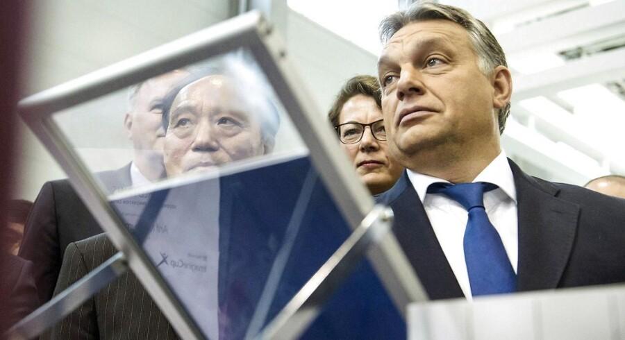 Ungarns kontroversielle premierminister Viktor Orban (til højre) har valgt at opsige alle statens teleabonnementer hos Magyar Telekom, som ikke længere vil sponsorere en popstjerne, der støtter regeringen. Arkivfoto: Szilard Koszticsak, EPA/Scanpix
