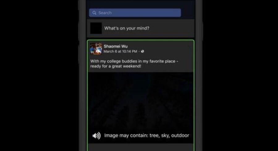 Endnu virker det kun på Apple-udstyr og kun på engelsk, men her ses, hvordan Facebooks egenudviklede kunstige intelligens vil lade skærmlæseren fortælle, hvad der er på billedet på Facebook-opslaget. »Billedet kan rumme træ, himmel, udendørs,« siger stemmen...