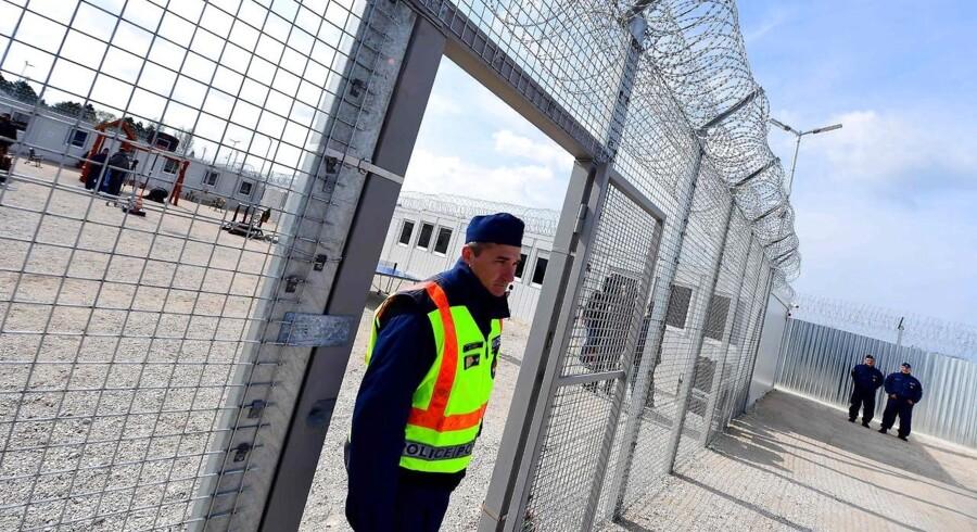 Billede af grænsen til Ungarn. Den ungarske model med pigtråd og frihedsberøvelse af asylansøgere skal til Danmark, mener Dansk Folkeparti.. (Foto: ATTILA KISBENEDEK/Scanpix 2017)