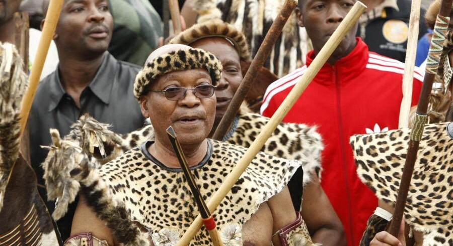 Jacob Zuma er zulu, som det tydeligt kom til udtryk, da han i fuld krigsudrustning indgik sit femte ægteskab i 2010. Og zulukrigeren træder karakter, når det handler om politik. Zuma er ikke synderligt populær, men han forstår at begå sig i ANC, og det har sikret ham en ny periode som præsident.