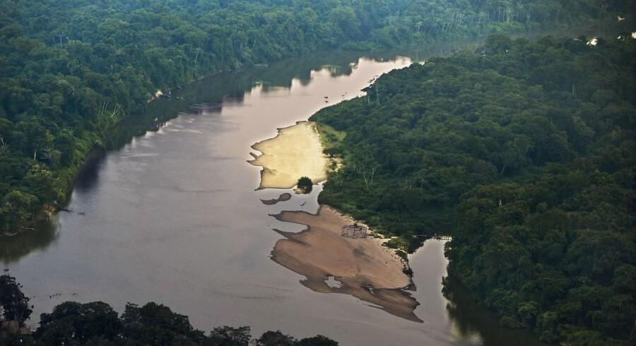 Myndighederne oplyser, at båden sejlede ned af Xingu floden, da den sank sent tirsdag. Floden er en cirka 2000 kilometer lang biflod til Amazonfloden.