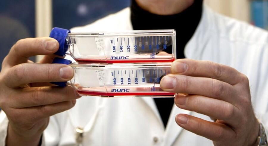 ARKIVFOTO. Stamcelleforskning på Rigshospitalet.