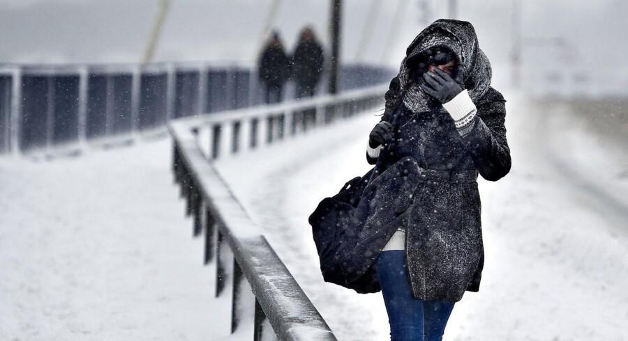 Arkivfoto - næste uge kan sæsonens første sne falde over Danmark.