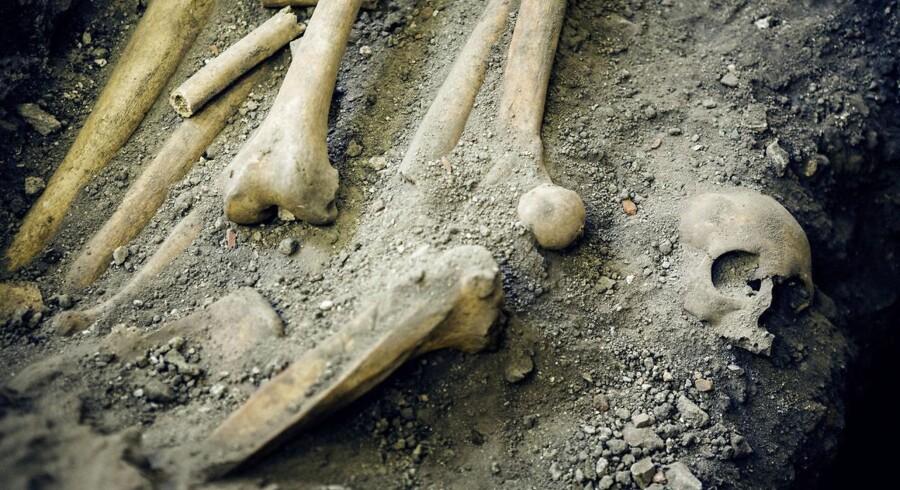 Dansk professor i arkæologi modtager pris på 1,5 millioner svenske kroner for forskning i oldtidens handel.