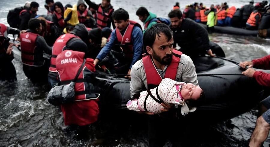 De officielle tal peger på, at godt hver tredje asylansøger i Grækenland er syrer, men i virkeligheden er de allerfleste nyankomne afrikanere, siger de lokale nødhjælpsorganisationer.