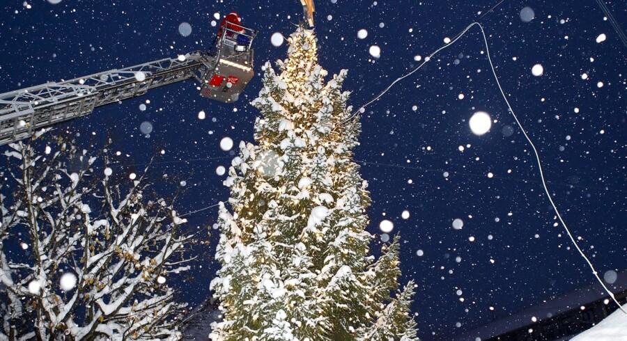 Byens juletræ tændes på Rådhustorvet. Julemanden kom med hele sin familie. Muddi og Salamidrengene spillede.