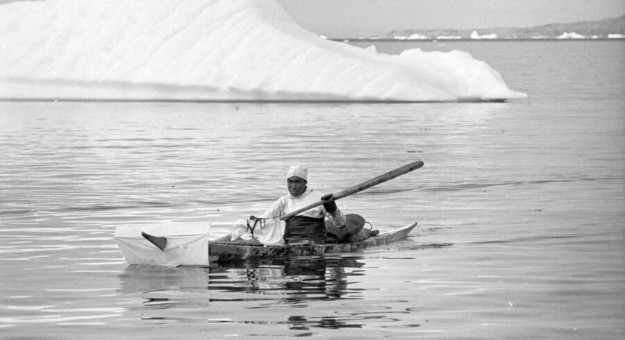 En grønlandsk fanger i kajak på jagt efter sæler langs den grønlanske vestkyst.
