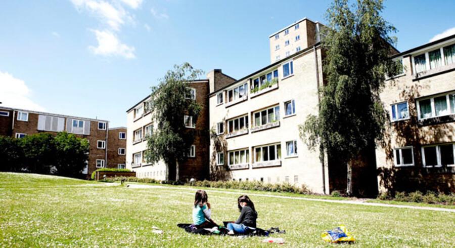 Utilpassede unge har den seneste tid skabt utryghed blandt beboerne i Tingbjerg.