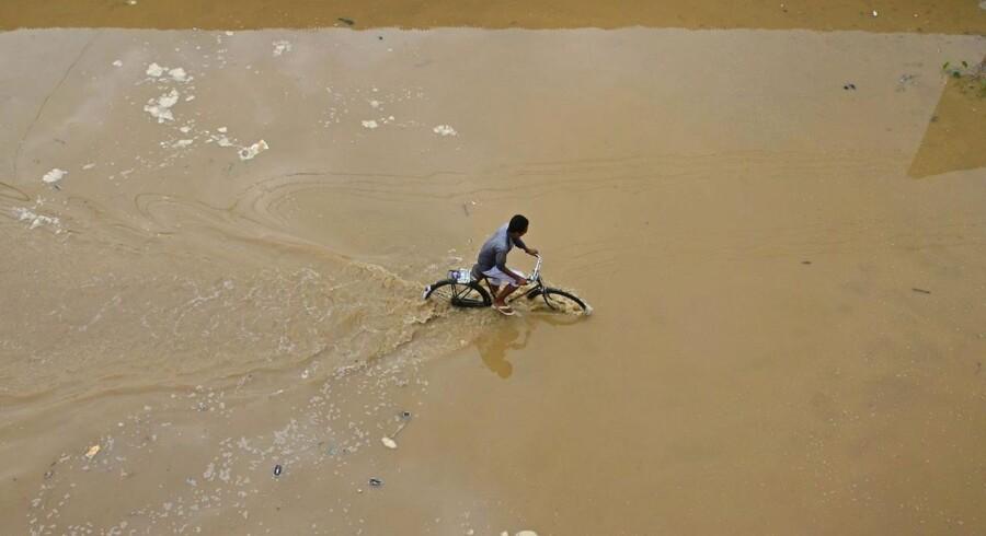 Billede fra Indien efter cyklonens hærgen.