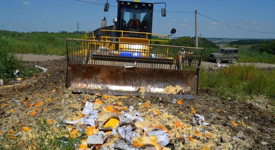 Russiske myndigheder destruerer fødevarer såsom ost, der er pålagt importforbud, med bulldozere.