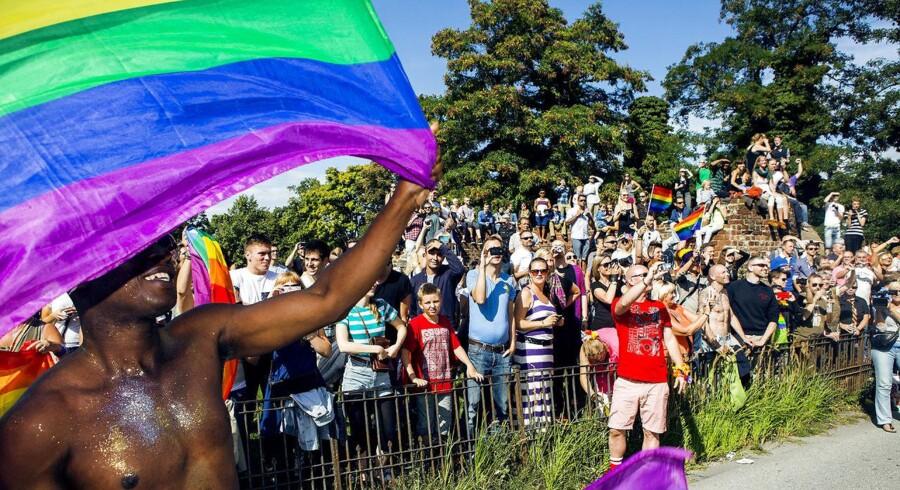 Hver tredje har oplevet diskriminerende omtale af LGBT-personer på deres arbejdsplads. ARKIVFOTO af Copenhagen Pride 2013.