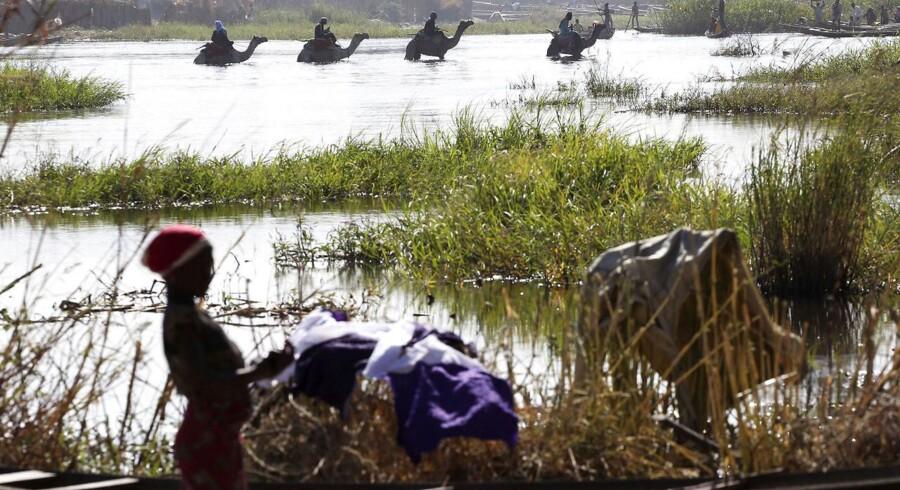 Arkivfoto. De befriede er overvejende kvinder, børn og unge mænd, som er blevet tvunget til at kæmpet for Boko Haram.