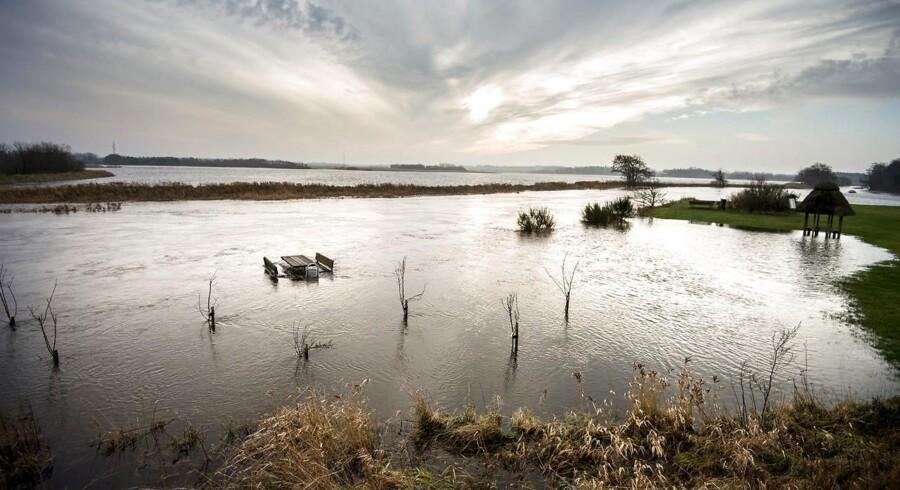 Formand for Folketingets miljøudvalg mener, at grundvandsstigning er et alvorligt og lidt overset problem.