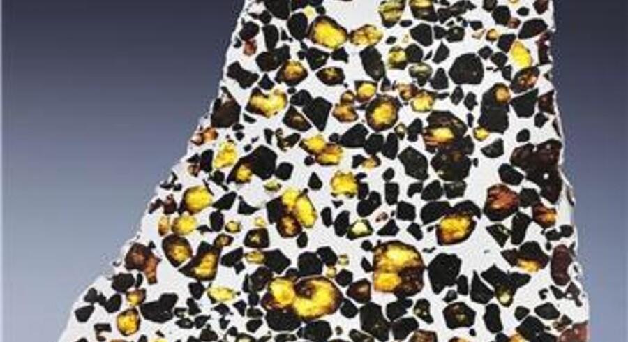 En stor palasit fundet i Argentina. Vurdering: 30.000-50.000 Dollars.