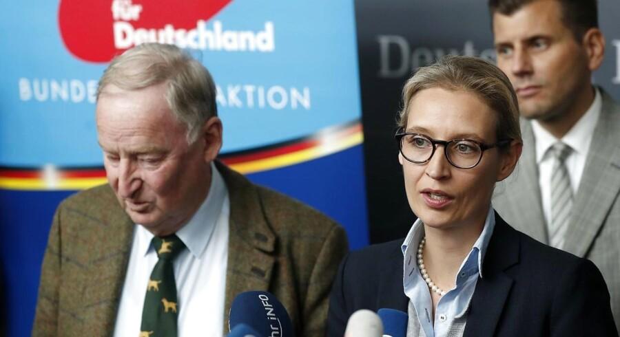 Højrepartiet AfD har fået et fremragende valg i Tyskland. Vil spidskandidaterne Alexander Gauland og Alice Weidel tage ved lære af deres europæiske søsterpartier?