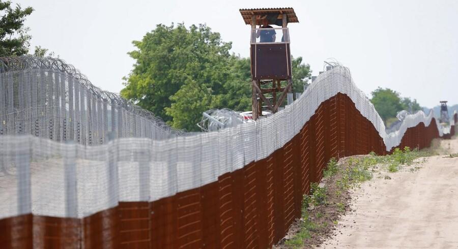 Skal det se sådan ud ved den dansk-tyske grænse? Ja, siger Dansk Folkepartis Morten Messerschmidt. Det er helt vildt, mener de Radikale.