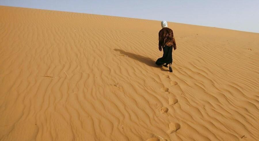 Myndigheder i Algeriet efterlod i sidste uge op mod 600 migranter i Sahara. Arkivfoto.