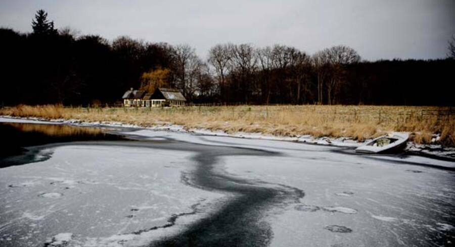 Vinterbølle Strand på en stille frostdag.