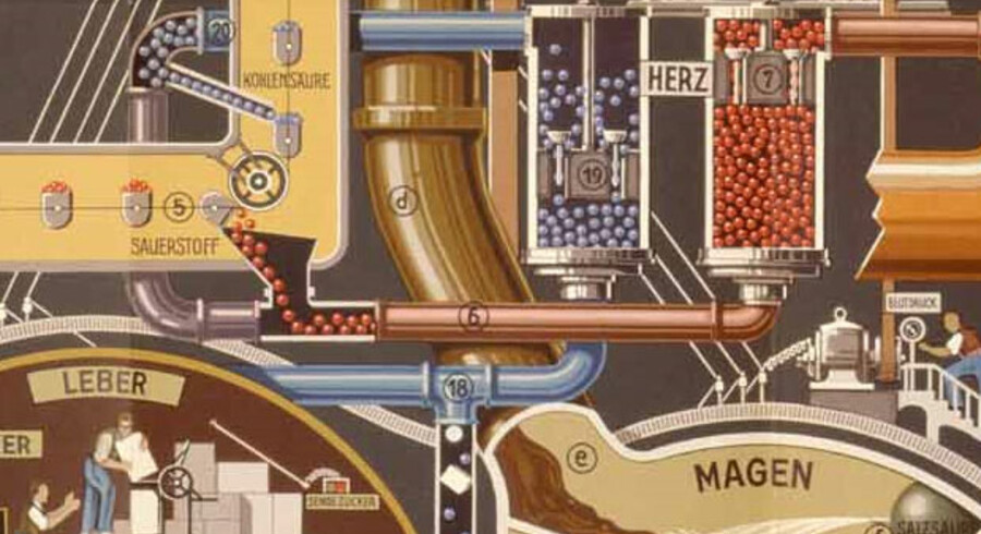 Fritz Hahns mest berømte enkelt-illustration er plakaten Der Mensch als Industriepalast, som er fyldt med interessante detaljer (udover den grundlæggende at industrien dengang var en positiv metafor). Man kan fx i toppen af plakaten og mennesket lægge mærke til, at forstanden arbejder alene, men fornuften er teamwork. Se hele plakaten her.