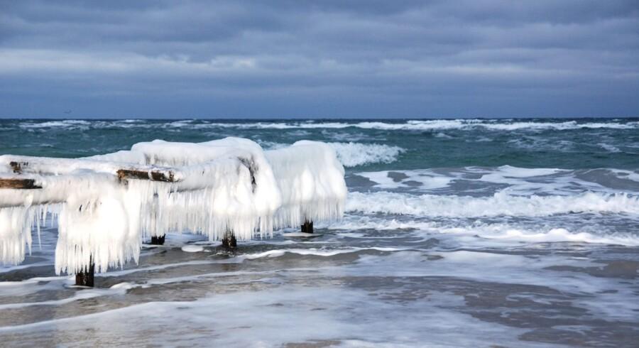 Vinter. Vintervejr ved Gilleleje strand