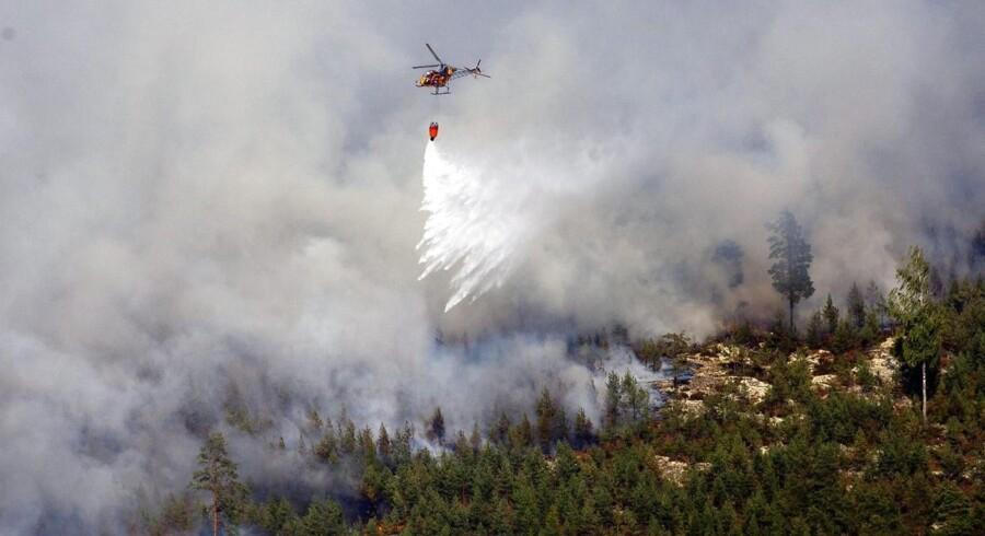 Kraftige skovbrande ved Rörbo nær Sala i det centrale Sverige.