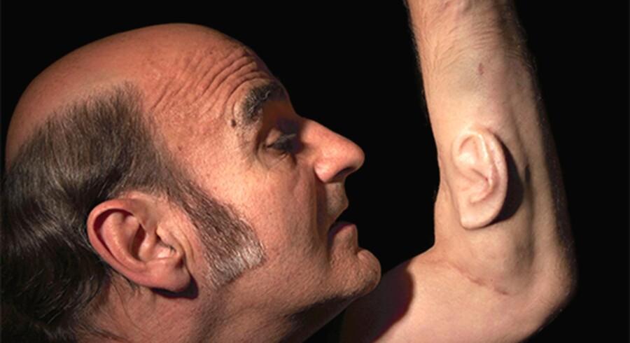 Tre ører er bedre end to. Den græsk-australske teknologi- og perfomancekunstner Stelarc har optimeret sin lyttesans gennem et ekstra øre, som kan ses på kunstmuseet i Ålborg.