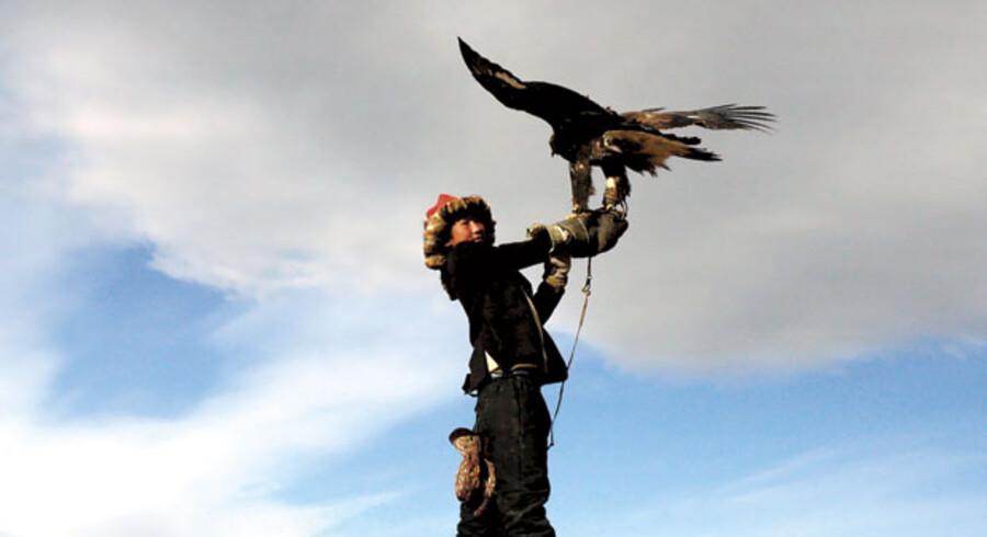 Med sine etnografiske kvaliteter appellerer »Ørnejægerens Søn« mest til det voksne publikum.