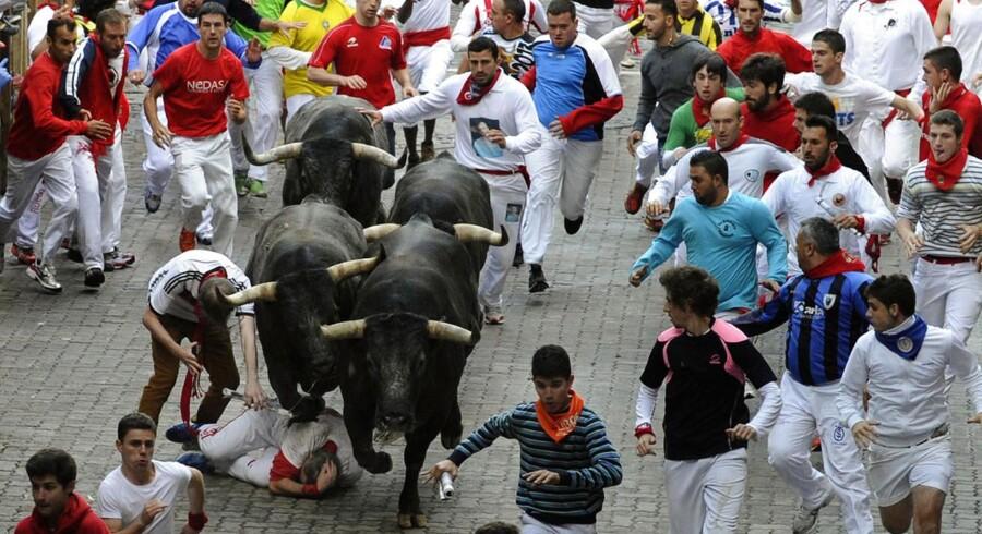 """Dumdristigt eller ej, det berømte tyreløb i den spanske by Pamplona er en ubrydelig tradition.  Under den årlige San Fermin-festival er tyreløbet kulminationen på en uges fest, og de frygtløse (eller dumdristige) løbere spæner for livet fra de vilde kreaturer, der slippes ud i byens smalle gader.  """"Jagten"""" ender i tyrefægterarenaen, hvor tyrenes skæbne bliver beseglet.  I de seneste 100 år er 14 personer blevet dræbt i løbene, hvor både spanske og udenlandske vovehalse fester i løbet af natten og iklæder sig hvidt tøj og røde tørklæder til morgenens løb.  I år fik en uheldig løber flået en ordentlig luns af sit lår. De billeder er dog for stærke til at blive vist her."""