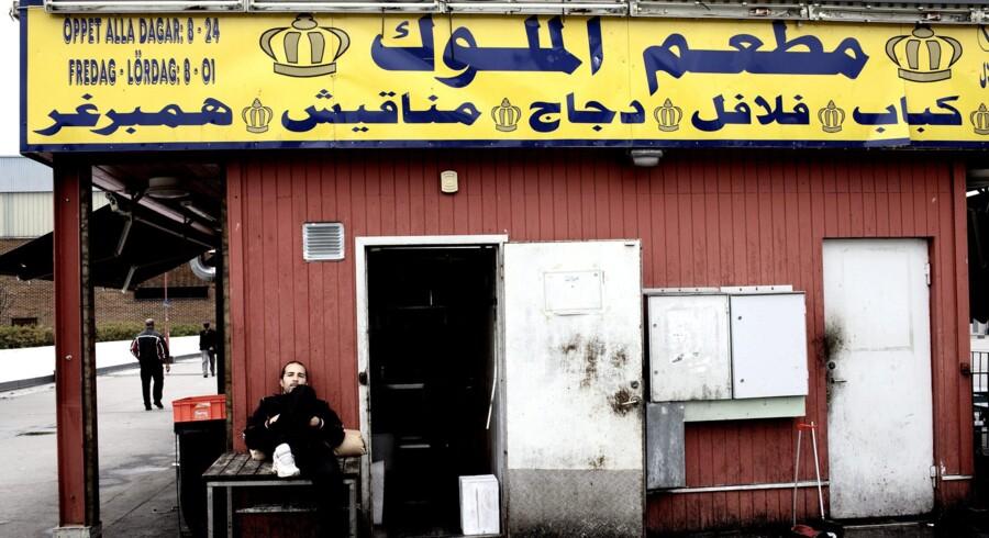 »Man vil som muslim forsvare sin egen ære og sit eget territorium. I en undersøgelse forklarer store drenge og unge mænd med indvandrerbaggrund, at de begår røveri, fordi de 'er i krig med svenskerne'.« Her fra Rosengård i Malmø.