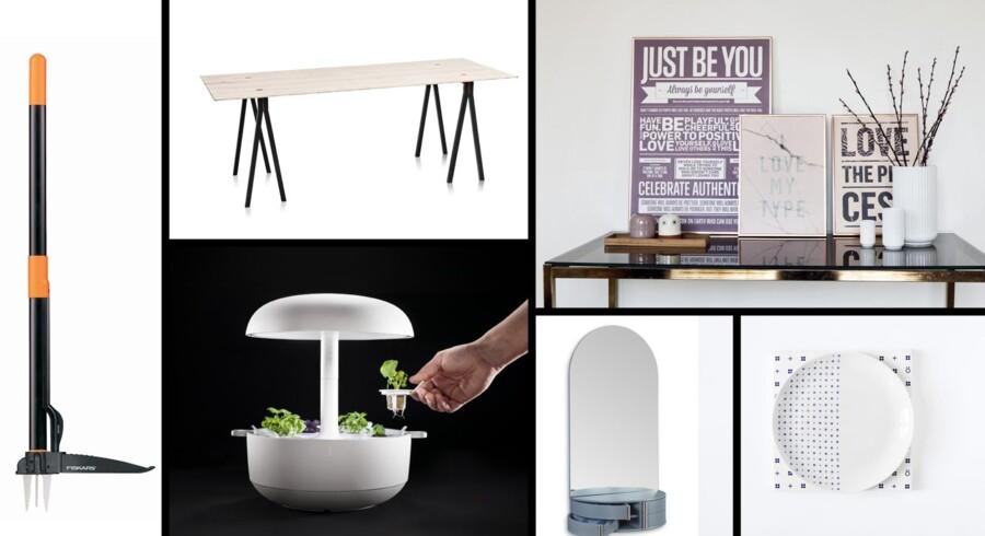 Denne uges designnyt indeholder alt lige fra smart haveværktøj til flotte plakater du kan hænge i stuen.