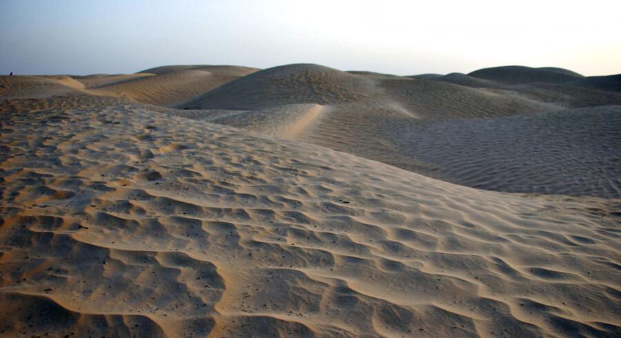 Sand så langt væk fra som Sahara kan falde ned over Danmark i weekenden, hvor der er mulighed for at observere det sjældne fænomen 'blod-regn' i Danmark. (Arkivfoto)