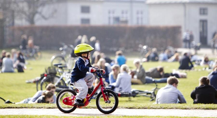Arkivfoto: Kongens Have i centrum af København.