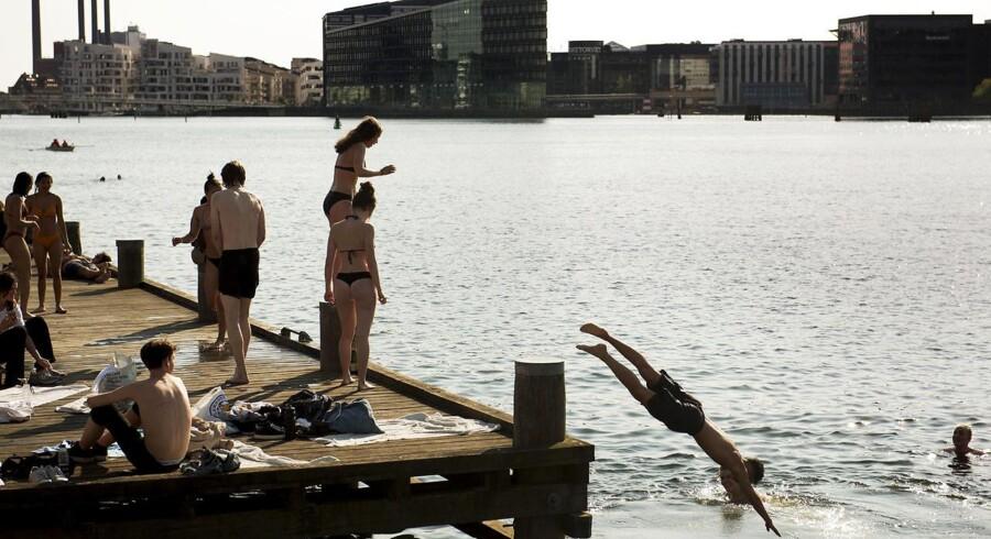 Islands Brygge byder på én slags livability. Foto: Linda Kastrup