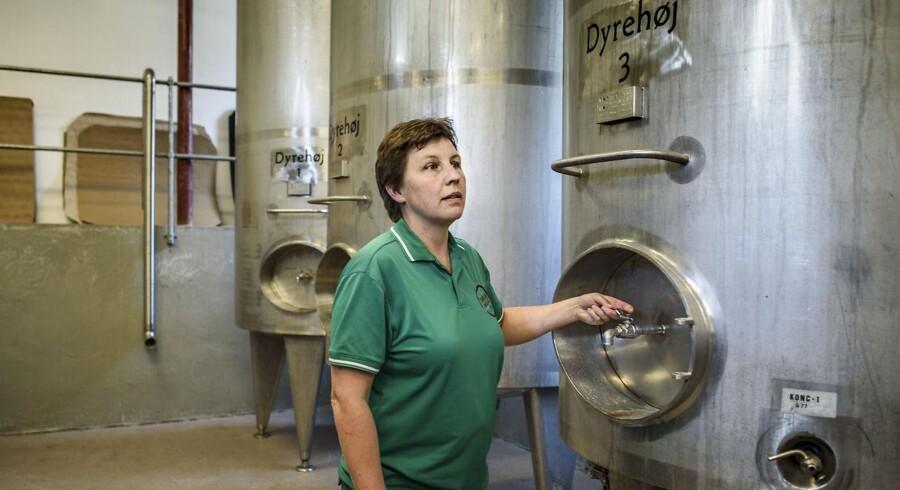 Vinbonde Betina Newberry fra Dyrehøj Vingaard på Røsnæs ved Kalundborg, der netop er begyndt at levere egen vin til 7 Coopbutikker.
