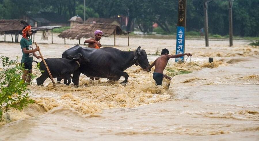 Mindst 47 personer er omkommet i jordskred og oversvømmelser, der er udløst af kraftig monsunregn i det sydlige Nepal. / AFP PHOTO / -