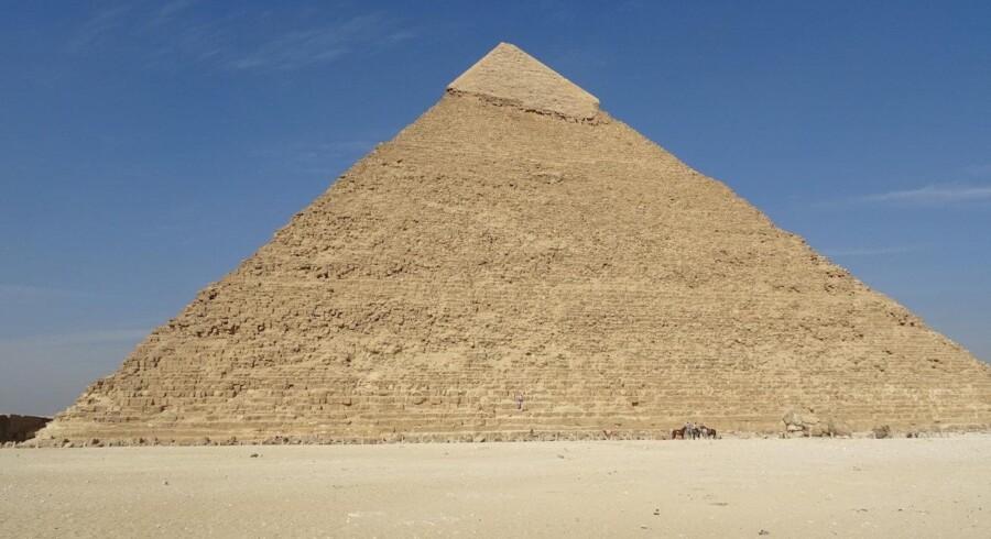 48 procent af de studerende på uddannelsen ægyptologi ender med at uddanne sig til arbejdsløshed. På billedet ses toppen af Khefrons pyramide i Egypten, som i dag står tilbage som det eneste minde om pyramidernes engang mere markante, glatte og hvidt skinnende overflader. Free/Louise Schou Drivsholm/arkiv