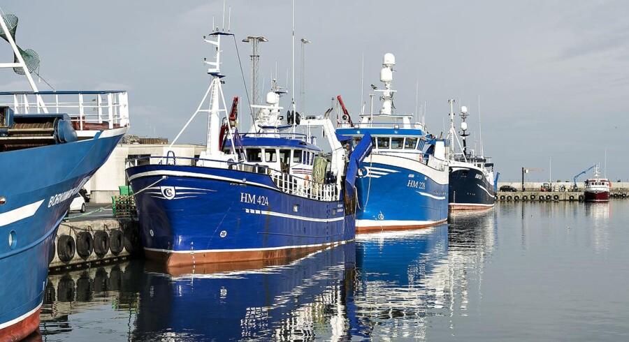 De kommende Brexit-forhandlinger bliver særdeles afgørende for 33 danske fiskere.