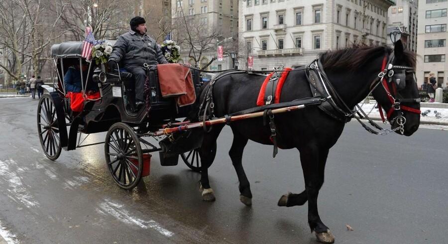 Hestevogne som denne har længe været et kendt syn i bybilledet omkring Central Park. Men borgmester Bill de Blasio mener ikke, at udnyttelsen af heste hører til i 2014.