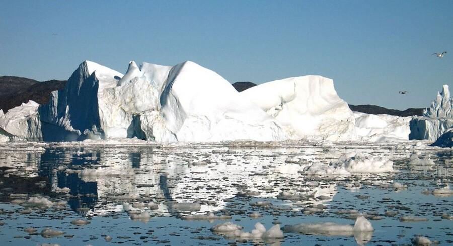 Havniveauet vil stige med en meter frem mod 2100, mener førende ekspert.