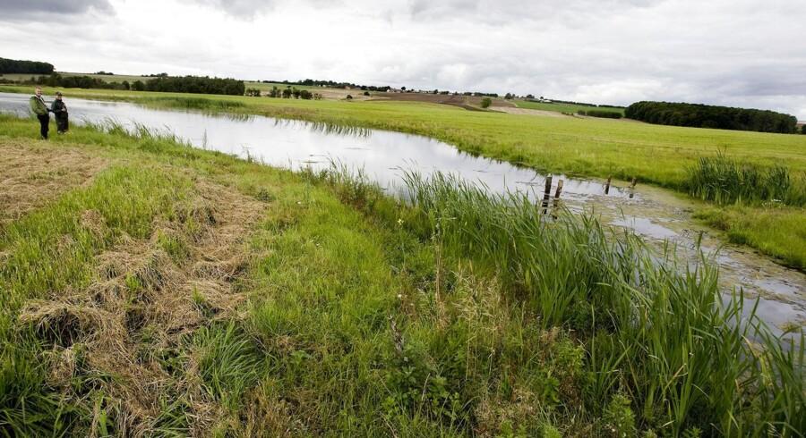 ARKIVFOTO. Danmark står fortsat uden nogen plan for, hvordan der skal sikres renere vand i de danske søer, fjorde og åer i overensstemmelse med EUs vandrammedirektiv.
