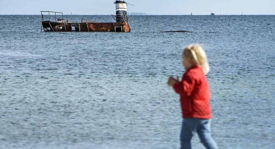 Alt efter temperament gælder det om at nyde synet af vraget af »Idun« ved Amager Strandpark. Inden længe bliver det nemlig bugseret væk og skrottet.