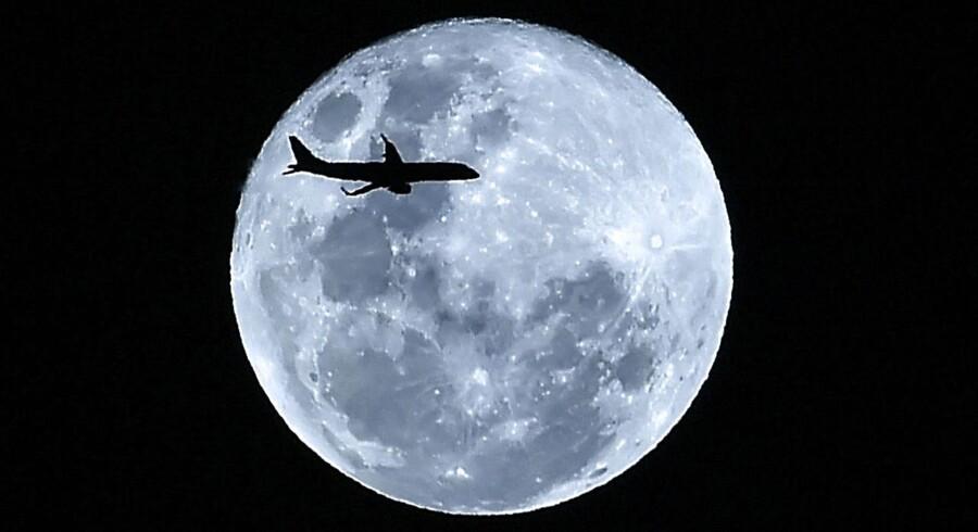 Uden Månens indflydelse ville mennesket næppe være opstået.