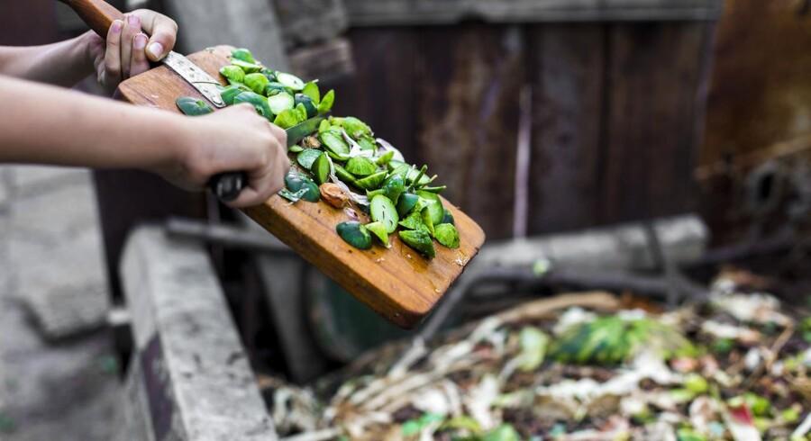Sensommer og efterår er et oplagt tidspunkt at starte en kompost op.