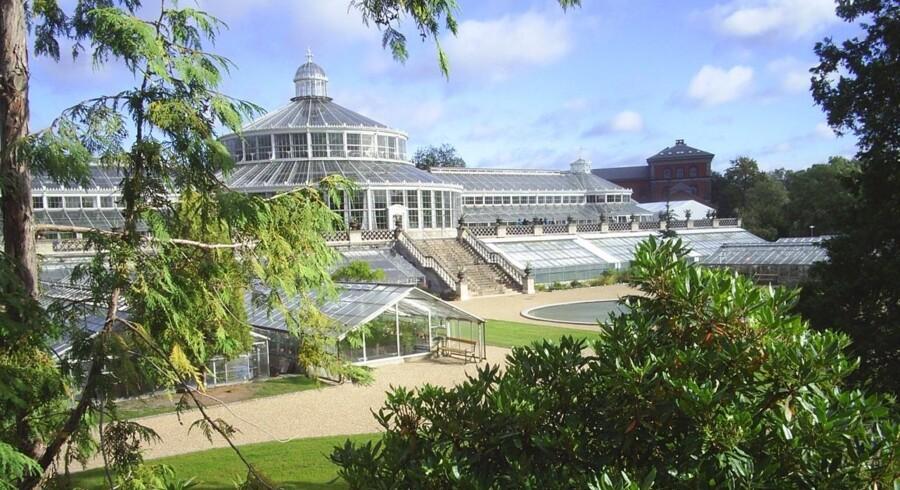 En stor milliondonation fra A.P. Møller Fonden skal finansiere nye udstillinger i Botanisk Have i København.
