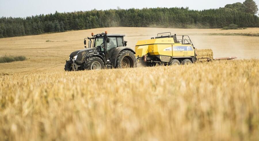 Årsagen til det store underskud er, at sommervarmen og tørken har spoleret høsten, og at svinepriserne er dykket betydeligt.