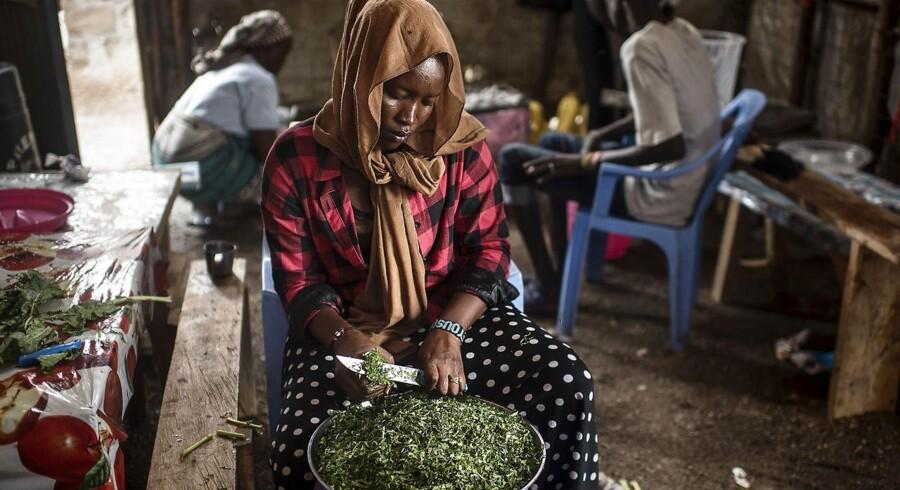 I Kukuma-lejren i Kenya er målet at gøre lejrens flygtninge selvforsørgende ved f.eks. at åbne små butikker, så de ikke længere er afhængige af bistandsmidler. Der er dog stadig udfordringer med at få regeringen i Kenya til at give dem formelle arbejdsrettigheder, så de kan klare sig lovligt selv, og på den måde bliver bistand brugt forkert.