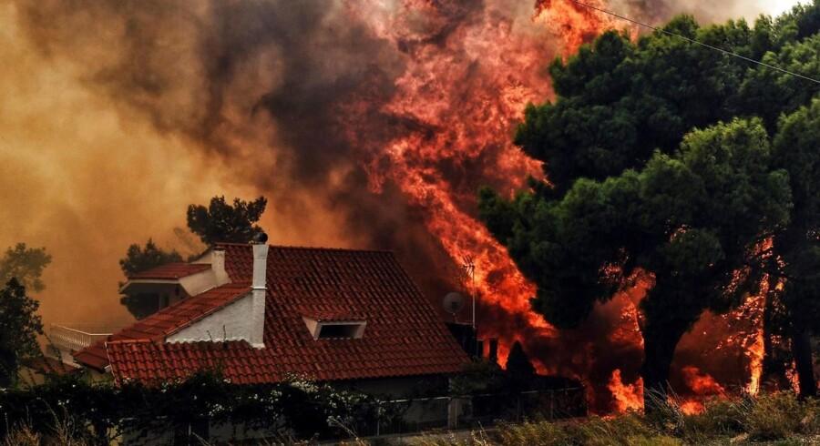Mindst 50 personer er omkommet i skovbrandene, som siden mandag har hærget området omkring Grækenlands hovedstad Athen og kystbyerne Rafina og Mati. Her ses et hus, ilden har fået fat i, i byen Kineta nær Athen.