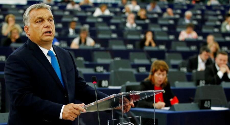 Den ungarske premierminister, Viktor Orbán, anklagede denne uge sine europæiske kritikere for at udsætte Ungarn for »politisk forfølgelse«, da han talte i EU-Parlamentet i Strasbourg. Alligevel stemte et flertal i parlamentet for indlede en artikel 7-procedure mod Ungarn. Foto: Ritzau / Scanpix / Reuters / Vincent Kessler
